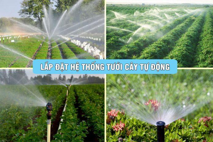 lap-he-thong-tuoi-cay