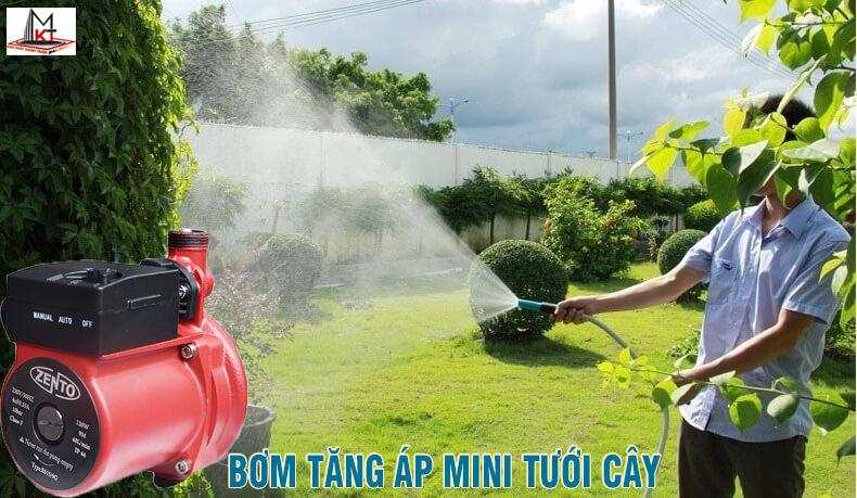Bơm tăng áp mini tưới cây